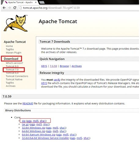 Apache Tomcat Setup - IT Training and Placements